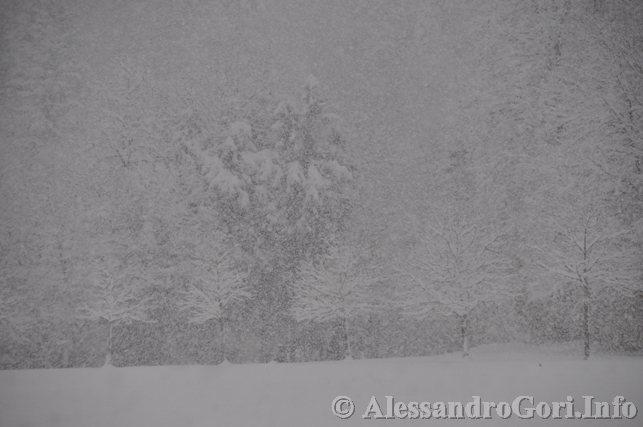 130212 neve in Carnia - Foto Alessandro Gori DSC_4453