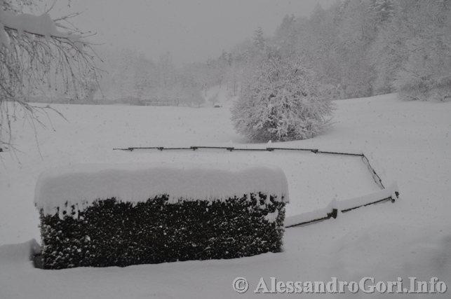 130212 neve in Carnia - Foto Alessandro Gori DSC_4465