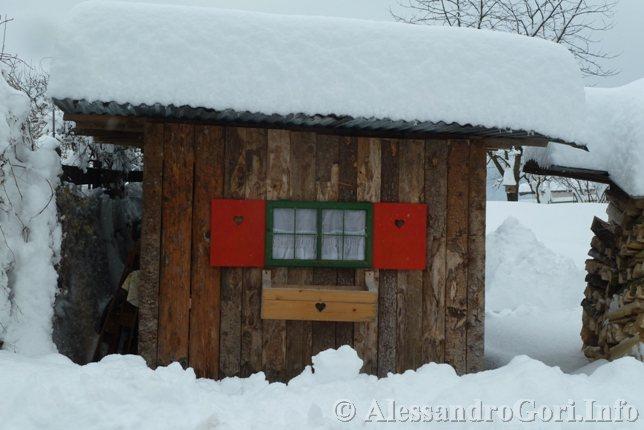130212 neve in Carnia - Foto Alessandro Gori P1160962