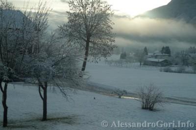 140128 nevicata in Carnia P1280126