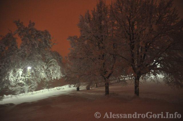 140130 nevicata in Carnia DSC_5055
