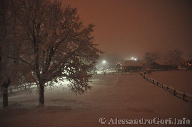 140130 nevicata in Carnia DSC_5058