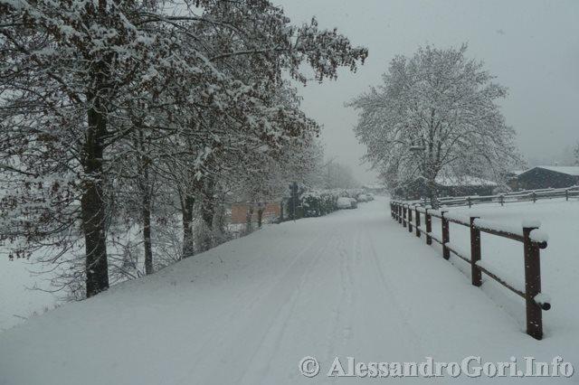 140130 nevicata in Carnia P1280150