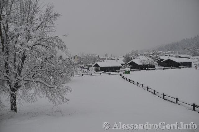 140131 nevicata in Carnia DSC_5061