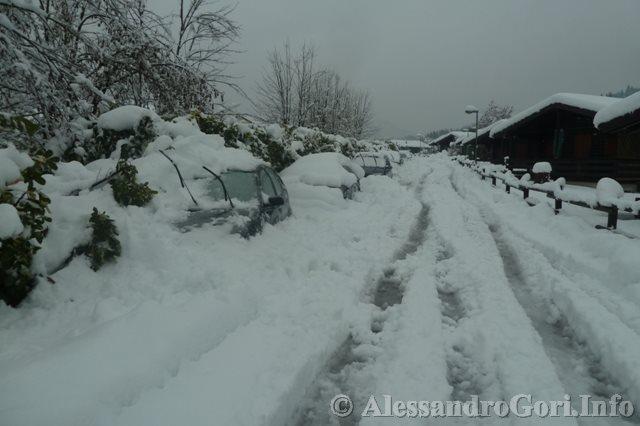 140131 nevicata in Carnia P1280160