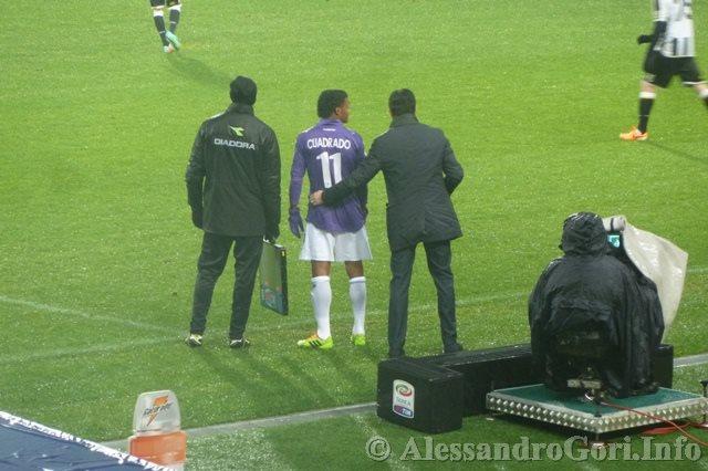 140204 Udinese-Fiorentina C.Italia P1280248