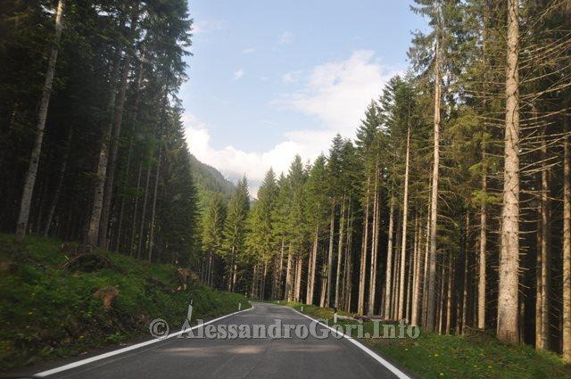 42 130615 discesa val Pesarina - Foto Alessandro Gori DSC_8871