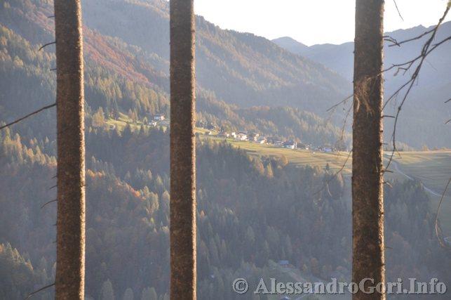 121021 Transumanza Carniagricola - Foto Alessandro Gori DSC_1834