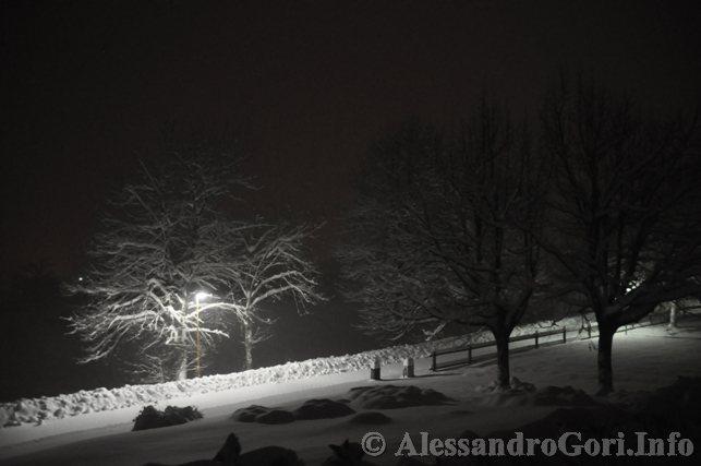 130212 neve in Carnia - Foto Alessandro Gori DSC_4445