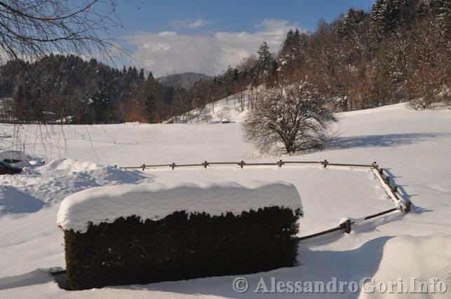 130212 neve in Carnia - Foto Alessandro Gori DSC_4469