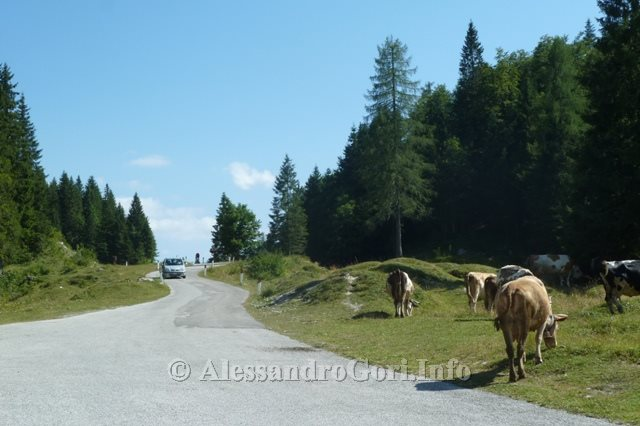 14 130821 Passo Pura - Foto Alessandro Gori P1230821