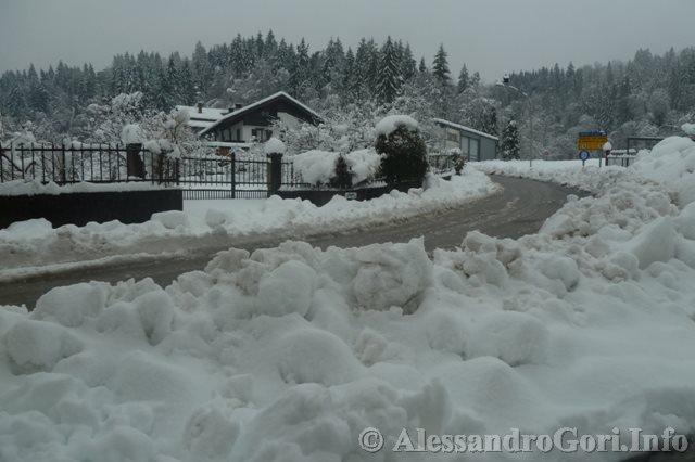 140131 nevicata in Carnia P1280166