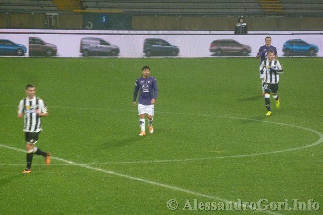 140204 Udinese-Fiorentina C.Italia P1280238